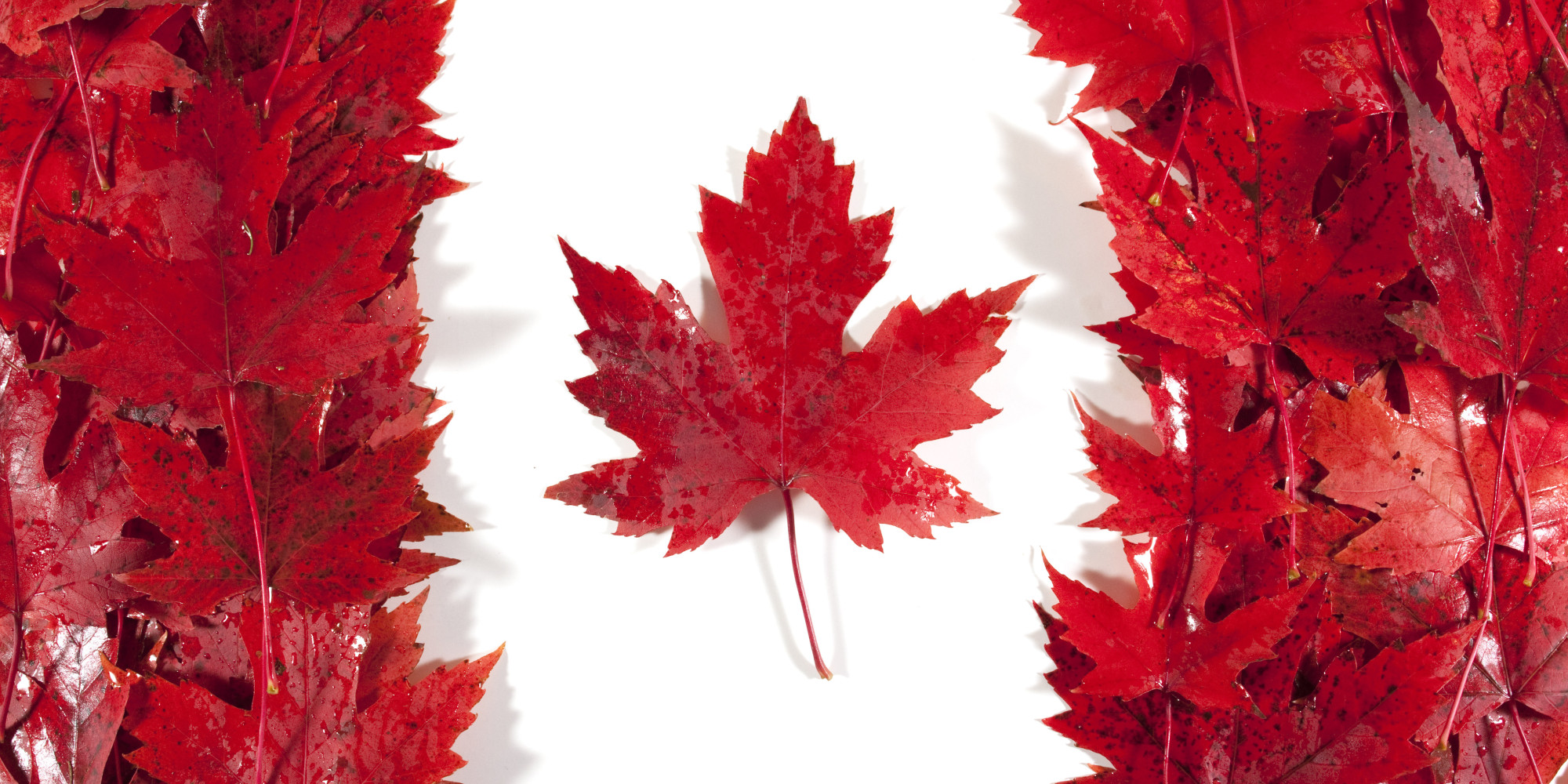 Dario Owen in Canada