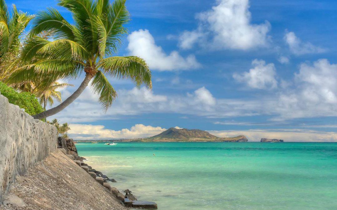 Dario Owen in Hawai