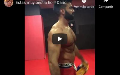 Dario Owen 2019